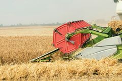 Closeup Combine harvesting a wheat field. Combine working. The field Stock Images