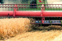 Closeup Combine harvesting a wheat field. Combine working. The field Royalty Free Stock Photo