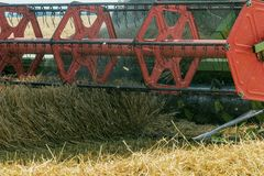 Closeup Combine harvesting a wheat field. Combine working. The field Royalty Free Stock Image