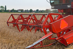 Closeup of a combine at work in a cornfield. Closeup of the harvesting of the grain in a cornfield by a powerful thresher Stock Image