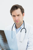 Closeup of a concentrated doctor examining spine x-ray Royalty Free Stock Image