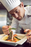 Closeup of a concentrated male chef garnishing food. In the kitchen royalty free stock image