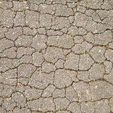 Closeup on concrete asphalt cracks on the road. Macro closeup on concrete asphalt cracks on the road Royalty Free Stock Photography