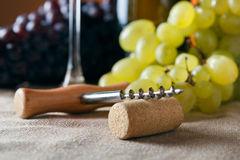 Closeup of corkscrew and cork Stock Photos