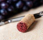 Closeup of corkscrew and cork Royalty Free Stock Photos
