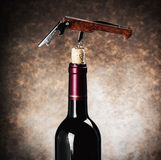 Closeup corkscrew in a wine bottle Stock Images