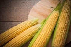 Closeup of corn  cobs Royalty Free Stock Photos