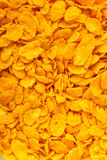 Closeup of corn flakes breakfast morning meal as food background Stock Photos