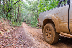 Closeup in a countryside landscape with a muddy road Stock Images