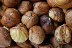 Closeup of couple of hazelnuts Stock Image
