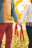 Closeup on couple holding leash together in park Stock Photo