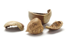 Closeup of cracked hazelnut Stock Photography