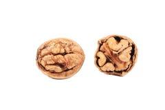 Closeup of cracked walnuts. Stock Photography