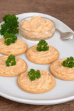 Closeup crackers and salmon pate Stock Photography