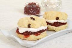 Closeup cream tea scones Stock Image