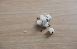 Closeup cube sugar and flies on wooden table Royalty Free Stock Photography