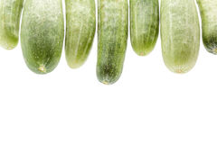 Closeup cucumber on white background with space. Stock Images