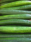 Closeup of Cucumbers in a Cont royalty free stock photos