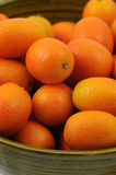 Closeup of cumquat Royalty Free Stock Images