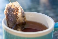 Teabag with herbal tea in a cup stock photography