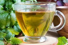 Closeup of cup of melissa tea with fresh melissa leaves. Closeup of a cup of melissa lemon balm tea on a table with fresh melissa leaves in the background royalty free stock photos