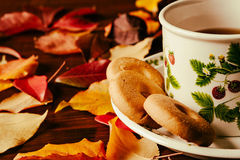 Closeup of cup of tea with biscuits and autumnal foliage Royalty Free Stock Image