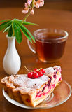 Closeup of cup of tea with cake Royalty Free Stock Images
