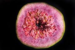 Closeup of cut Ecuadorian fig. On dark background Royalty Free Stock Photos