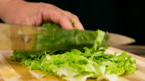 Closeup of cut green salad leaf on cutting board stock footage
