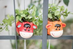 Closeup cute flowerpot in cow shape hang at iron fence background stock photo