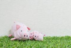 Closeup cute pink pig doll and three little pig on artificial grass and cream color wallpaper wall textured background with copy s stock photography