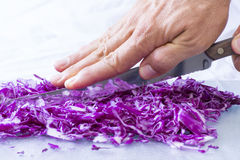 Closeup cutting red cabbage Stock Images