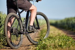 Closeup of cyclist man legs with mountain bike on outdoor trail in the summer field. Stock Images