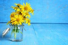 Closeup daisies in a bottle Stock Photos