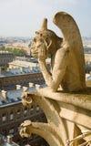closeup dame de gargoyle notre paris Royaltyfri Fotografi