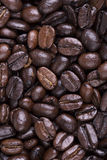 French roast coffee beans Royalty Free Stock Photos