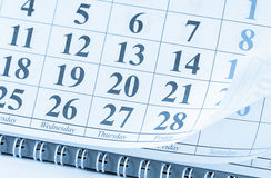 Closeup of dates on calendar page Royalty Free Stock Images
