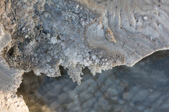 Closeup Dead sea coastline Royalty Free Stock Images