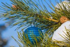 Closeup decorated fir tree Stock Image