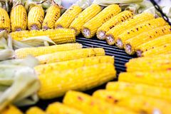 Closeup delicious BBQ grilled Mexican corn on the cob, vegetable food background. Barbecued roasted on the hot stove fresh tasty s royalty free stock photography