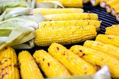 Closeup delicious BBQ grilled Mexican corn on the cob, vegetable food background. Barbecued roasted on the hot stove fresh tasty s royalty free stock image