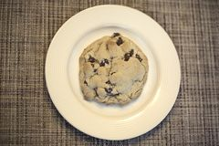 Closeup of a Delicious Chocolate Chip cookie on a plate. Sitting on a table stock image