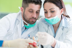 Closeup of dentistry student practicing on a medical mannequin royalty free stock photo