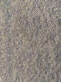 Closeup and detail of carpet. Image of Closeup and detail of a carpet or rug surface stock photos