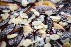 Closeup detail of plums pie Stock Photos