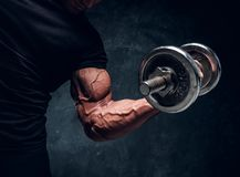 Closeup detailed photo shoot of bodybuilder`s arm royalty free stock image