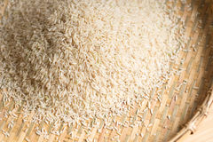Closeup details of Brown rice  in bamboo back grounds. Selective focus Royalty Free Stock Image