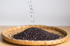 Closeup details of Thai rice berry in bamboo black grounds. Rice berry is a cross-bred unmilled rice possessing dark violet grain and Thai Hom Mali Rice ( Royalty Free Stock Image