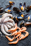 Closeup of different raw seafood Royalty Free Stock Image