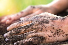 Closeup of dirty hand holding wet soil. Royalty Free Stock Images